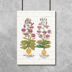 Plakat z liliami na tle cegiełek