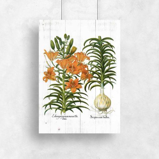Plakat z liliami tygrysimi
