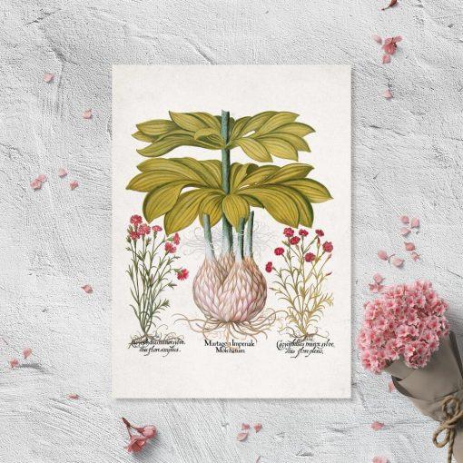 Plakat z motywem lilii i korzeni