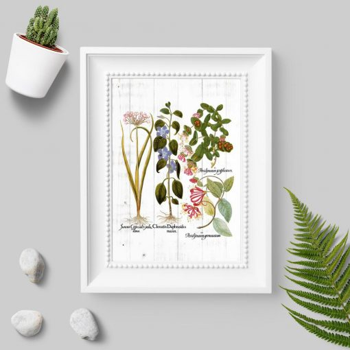 Plakat z motywem roślinnym na tle desek