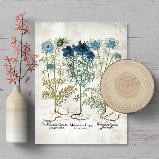 Plakat z niebieskimi kwiatami polnymi