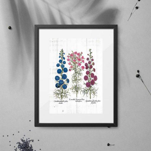 Plakat z odmianami roślin łąkowych na tle desek