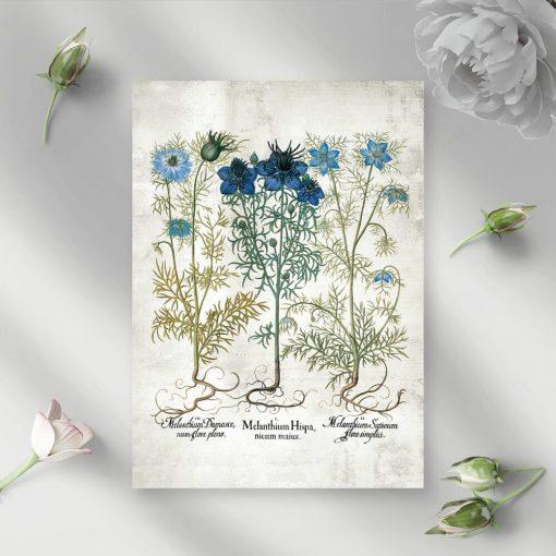 Plakat z polnymi kwiatuszkami
