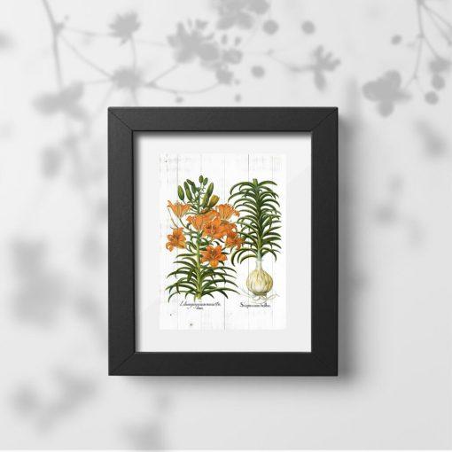Plakat z pomarańczowymi kwiatami