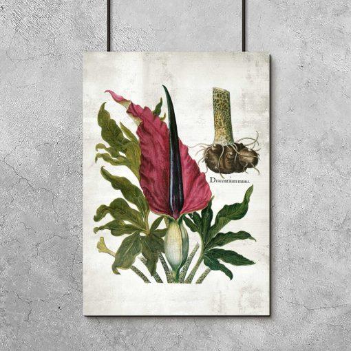 Plakat z rośliną zielną