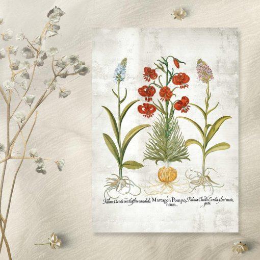 Plakat z roślinami kwitnącymi