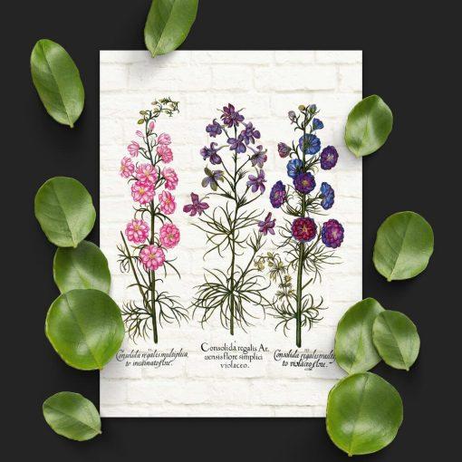 Plakat z roślinami leczniczymi na tle cegieł