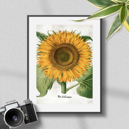 Plakat z żółtym słonecznikiem do powieszenia w korytarzu