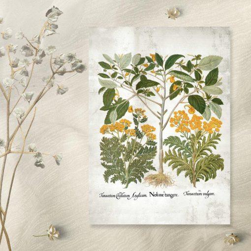 Plakat z żółtymi kwiatkami do leczenia