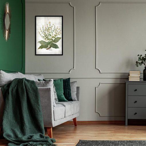 Plakat zielarski z szałwią białą do sypialni