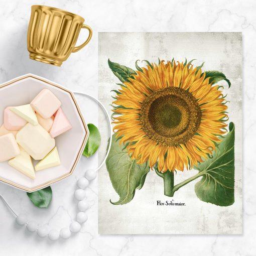 Plakat żółty słonecznik i zielone liście