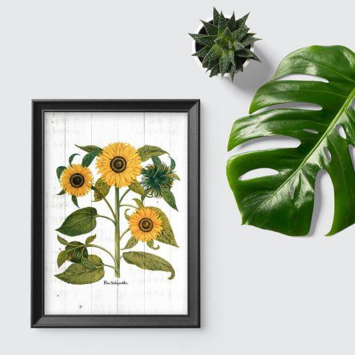 Rustykalny plakat ze słonecznikami na tle desek