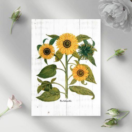 Słoneczniki na plakacie w żółtym kolorze