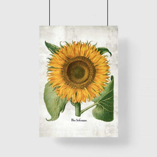 Żółty plakat ze słonecznikiem