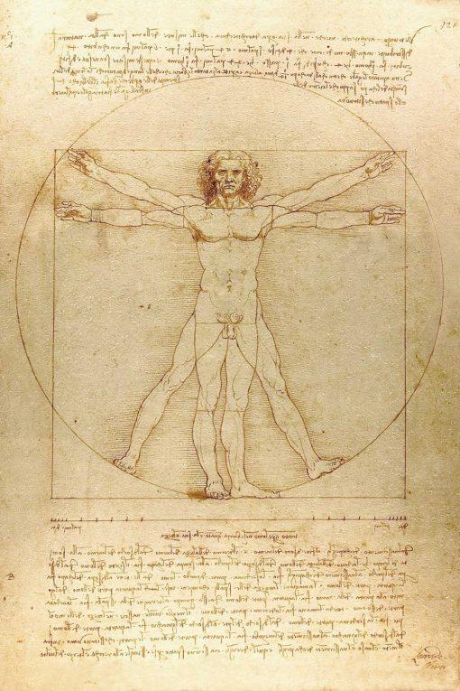 Foto-tapeta z reprodukcją rysunku Leonarda da Vinci do jadalni