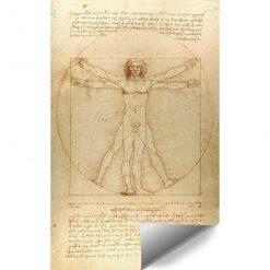 Foto-tapeta z reprodukcją rysunku Leonarda da Vinci do klubu