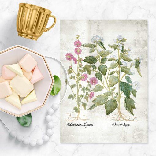 Plakat z kwiatami białymi