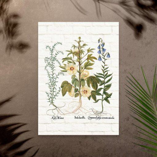 Plakat z kwiatami do nauki biologii