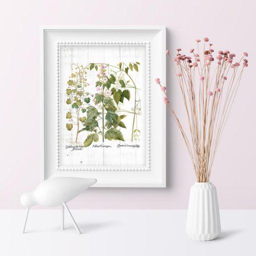 Plakat z kwiatami i ziołami na tle desek