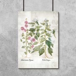 Plakat z kwiatami różowymi
