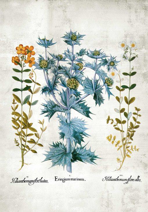 Plakat z kwiatuszkami i listeczkami