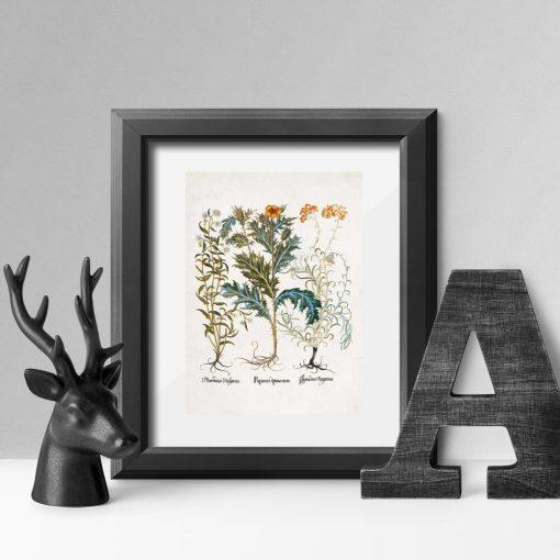 Plakat z makiem i innymi roślinami