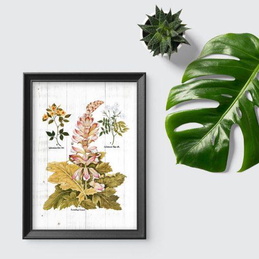 Plakat z motywem botanicznym do dekoracji szkolnej klasy