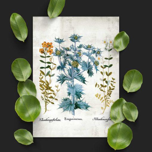 Plakat z motywem kwiatowym do powieszenia w klasie