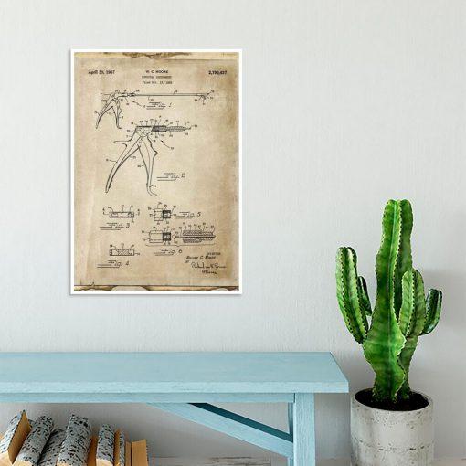 Plakat z patentem na kleszcze weterynaryjne dla studenta