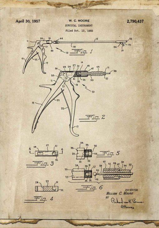 Plakat z patentem na kleszcze weterynaryjne do szkoły
