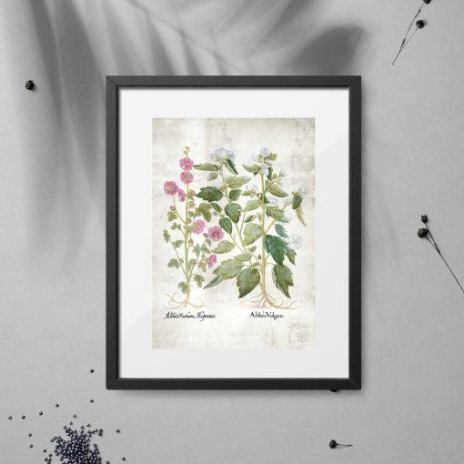 Plakat z różowymi i białymi kwiatkami