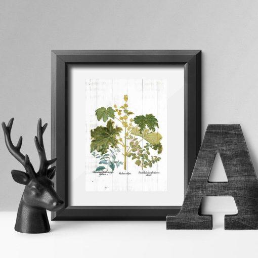 Plakat z ziołami na tle bielonych desek