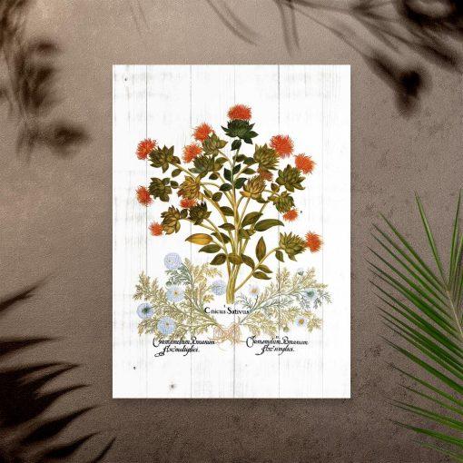 Plakat zielny