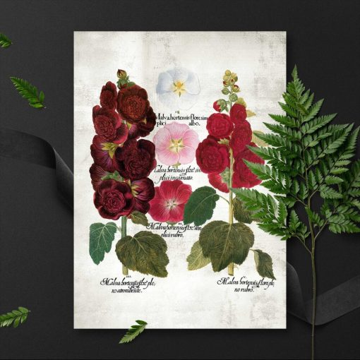 Plakaty z wariantami kwiatów