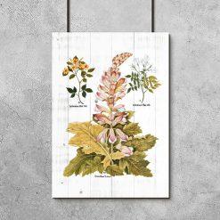 Rustykalny plakat z motywem botanicznym na tle desek