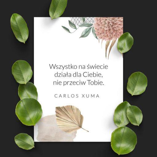 Plakat z życiowym motto - C. Xuma
