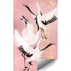 Fototapety z lecącymi ptakami