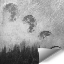 Tapeta z księżycem i drzewami